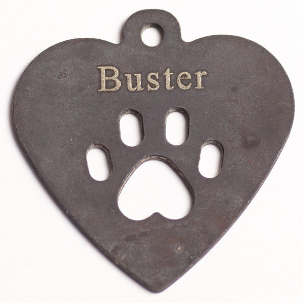 dog_buster_after_600